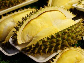 durian_aways_healthwall